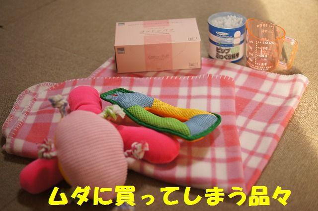 3_20120118203730.jpg