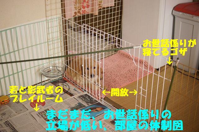 3_20120120215538.jpg