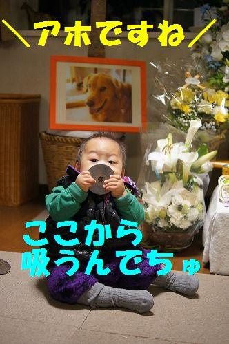 4_20111127214151.jpg