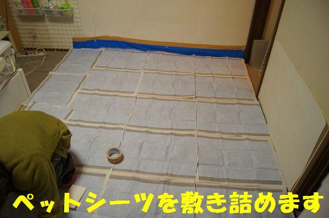 4_20120110213832.jpg