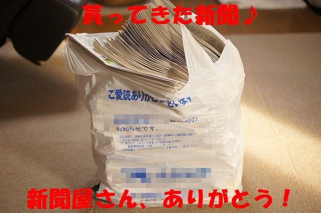 4_20120118213916.jpg