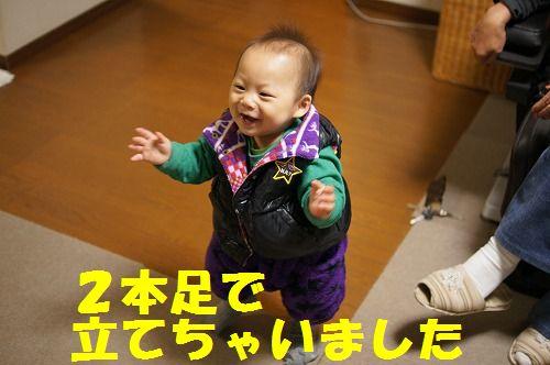 5_20111127214150.jpg