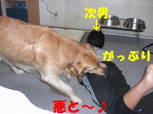 5_20111207202807.jpg