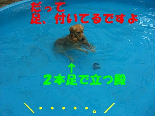 5_20111215204520.jpg