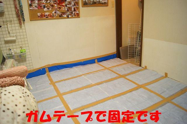 5_20120110213831.jpg