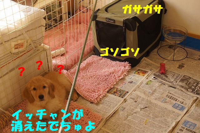 5_20120118203729.jpg
