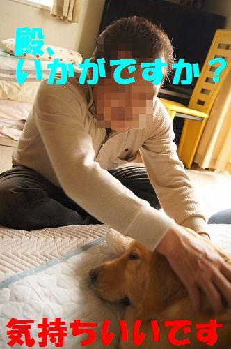 6_20111122233945.jpg