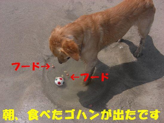 6_20111208220359.jpg