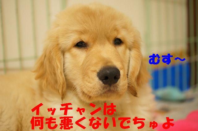 6_20120121224257.jpg