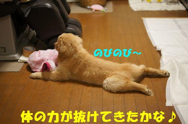 6_20120123221730.jpg