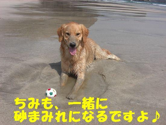7_20111208220411.jpg