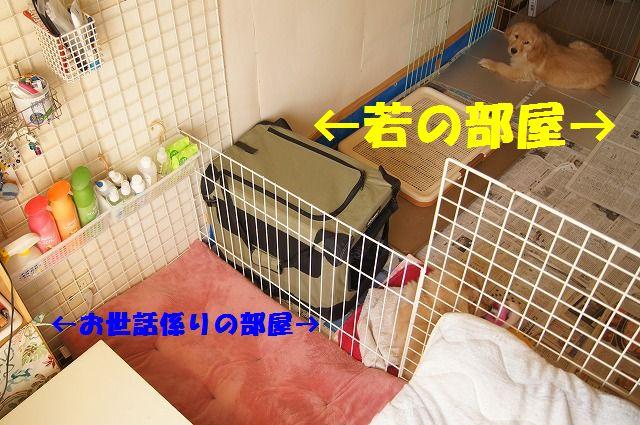 7_20120117221943.jpg