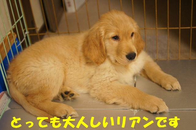 7_20120119222451.jpg