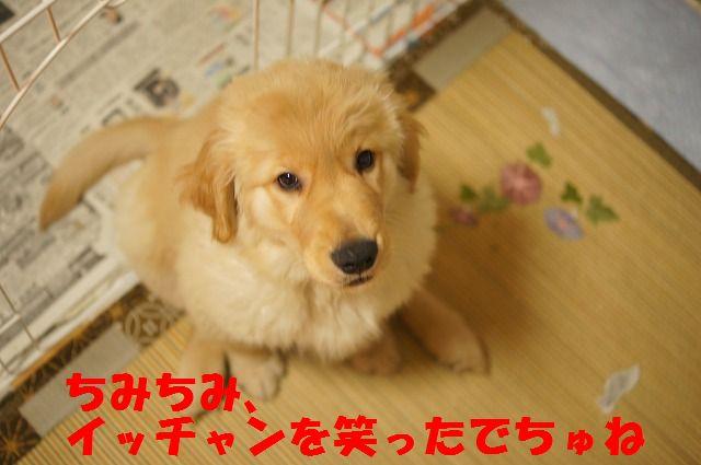 7_20120120215552.jpg