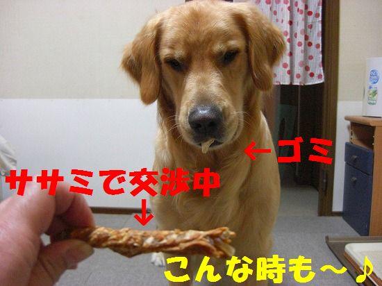 8_20111207193832.jpg