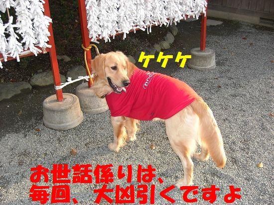 9_20111209203453.jpg