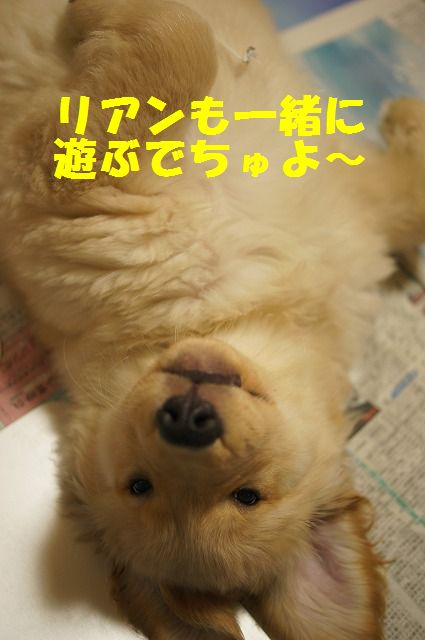 9_20120121224327.jpg