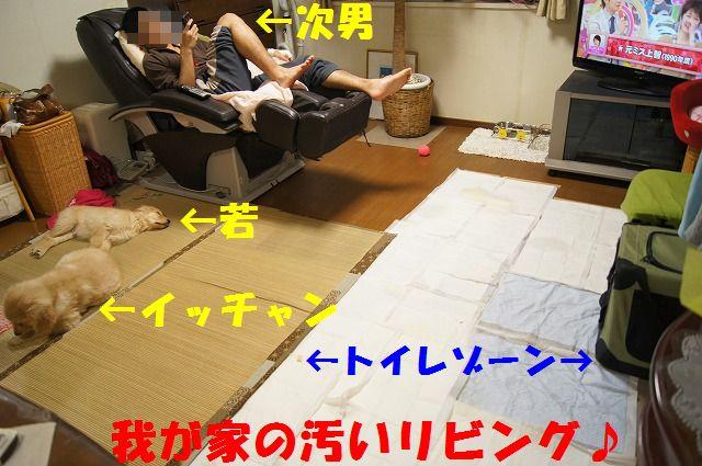 9_20120123221749.jpg