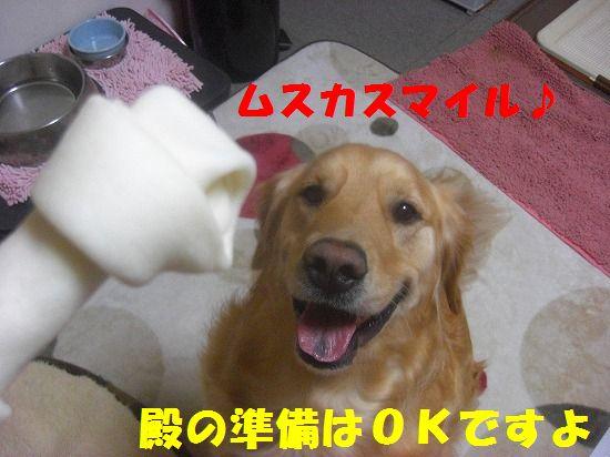 CIMG4713_20111217185807.jpg