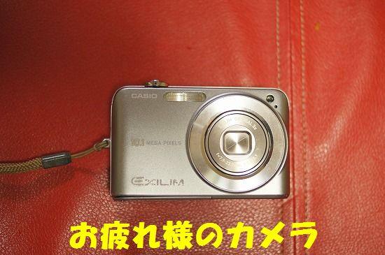 DSC01018.jpg