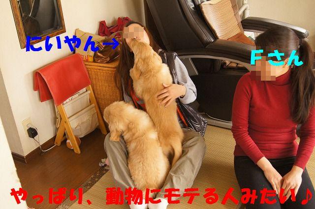 DSC04738_20120124224639.jpg
