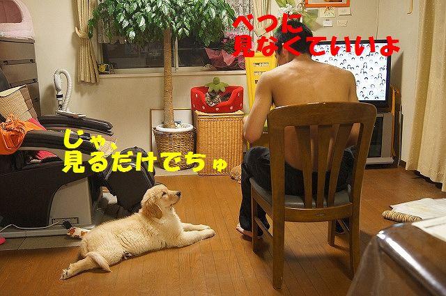 DSC05691.jpg