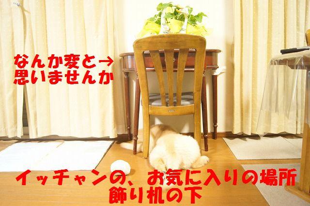 DSC05732.jpg
