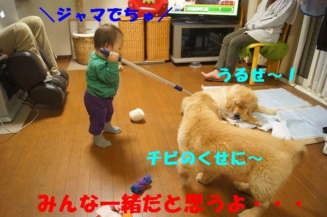 DSC05996.jpg