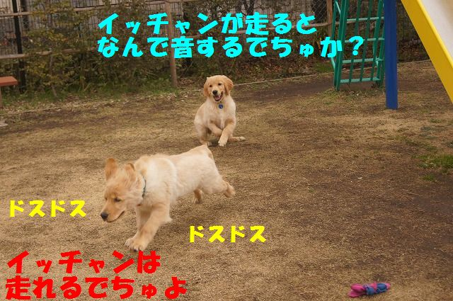 DSC07365.jpg