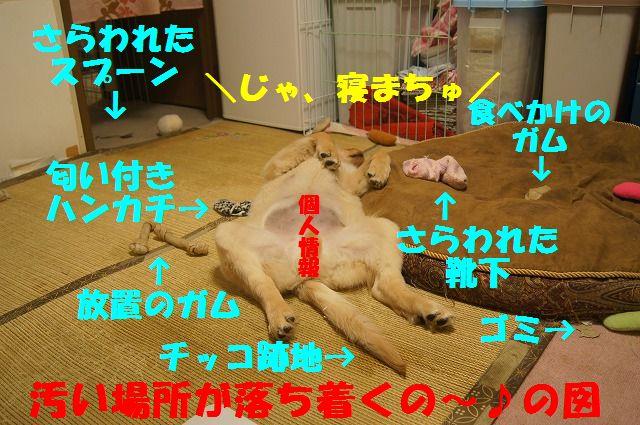 DSC07615_20120301213520.jpg