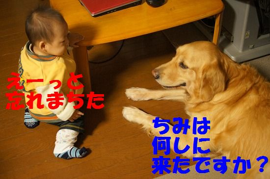 DSC08913.jpg