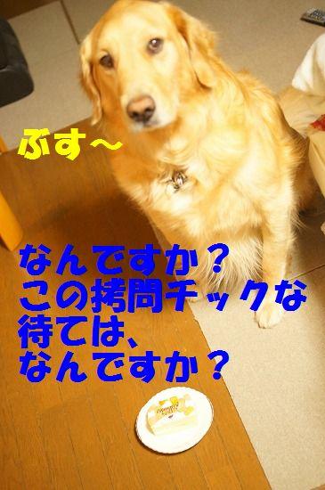 DSC09694.jpg