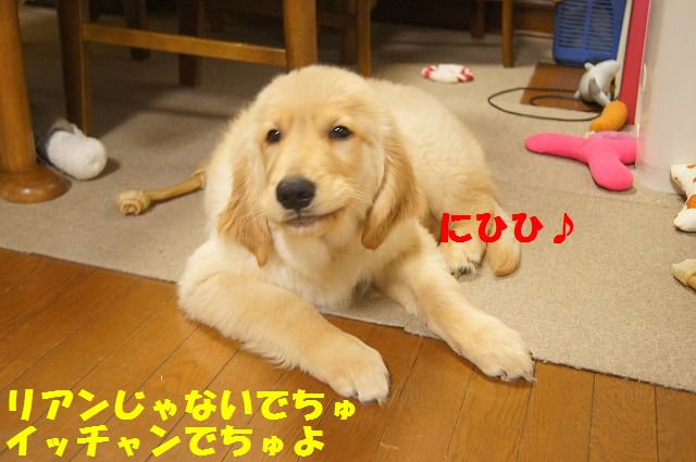 DSC9.jpg