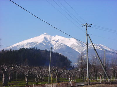 iwakisan4-18-2.jpg