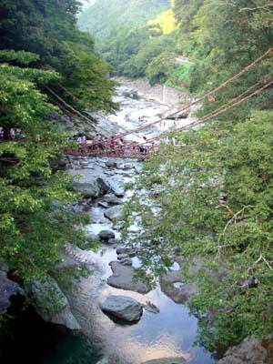 祖谷渓谷 かずら橋