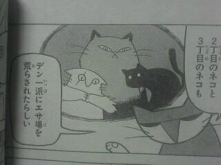 うちの猫こんななんだが