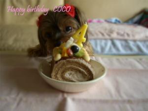 お誕生日のケーキ♪