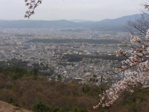 20120415京都桜ラン0239