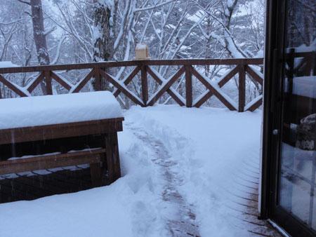 雪、雪の朝7