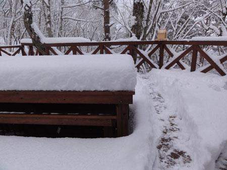雪でも!2