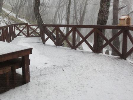 粉雪から小雨へ2