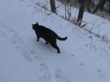 雪の上を歩くには6