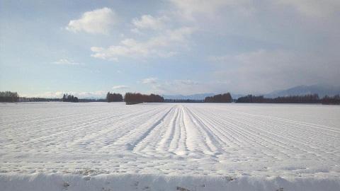 雪 北海道
