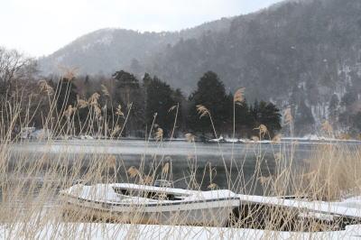 湯ノ湖 対岸