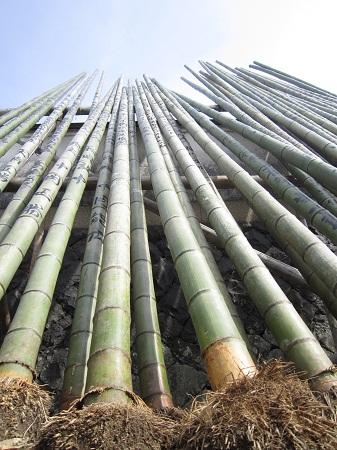 並べられた竹