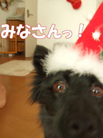 クリスマス07 (47)