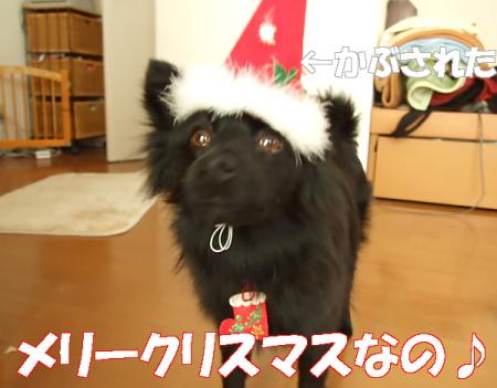 クリスマス07 (46)