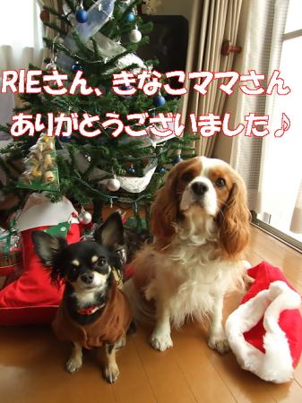 クリスマス07 (57)0000