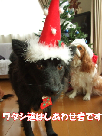 クリスマス07 (64)0002