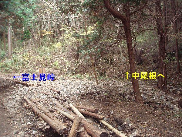 PB280064.jpg